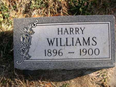 WILLIAMS, HARRY - Dawes County, Nebraska | HARRY WILLIAMS - Nebraska Gravestone Photos