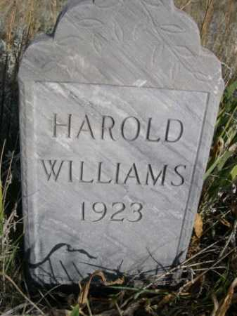 WILLIAMS, HAROLD - Dawes County, Nebraska | HAROLD WILLIAMS - Nebraska Gravestone Photos