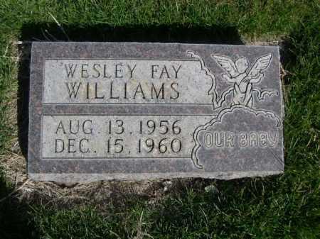 WILLIAMS, WESLEY FAY - Dawes County, Nebraska | WESLEY FAY WILLIAMS - Nebraska Gravestone Photos