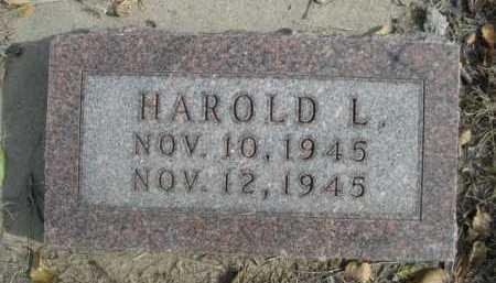 WILLSON, HAROLD L. - Dawes County, Nebraska   HAROLD L. WILLSON - Nebraska Gravestone Photos