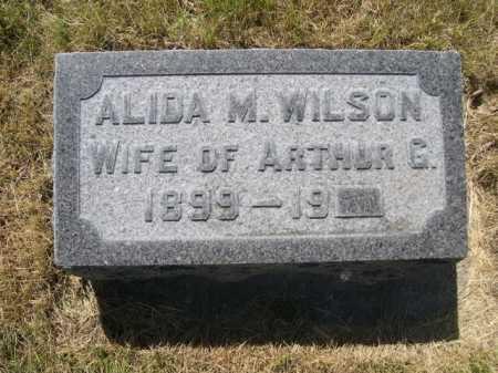 WILSON, ALIDA M. - Dawes County, Nebraska | ALIDA M. WILSON - Nebraska Gravestone Photos