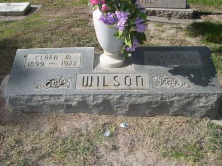 WILSON, CLARA M. - Dawes County, Nebraska | CLARA M. WILSON - Nebraska Gravestone Photos