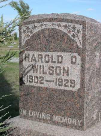 WILSON, HAROLD O. - Dawes County, Nebraska | HAROLD O. WILSON - Nebraska Gravestone Photos