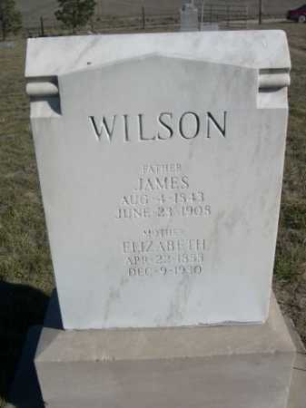 WILSON, ELIZABETH - Dawes County, Nebraska | ELIZABETH WILSON - Nebraska Gravestone Photos