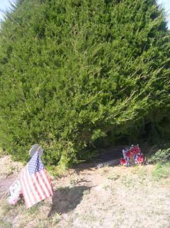 WITESEL, JENNY - Dawes County, Nebraska | JENNY WITESEL - Nebraska Gravestone Photos