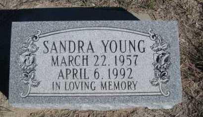 YOUNG, SANDRA - Dawes County, Nebraska | SANDRA YOUNG - Nebraska Gravestone Photos