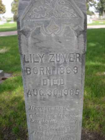ZUVER, LILY - Dawes County, Nebraska | LILY ZUVER - Nebraska Gravestone Photos