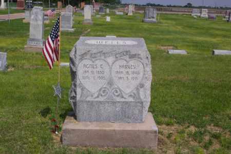 WELLS, HARVEY - Dawson County, Nebraska | HARVEY WELLS - Nebraska Gravestone Photos