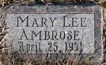 AMBROSE, MARY LEE - Dixon County, Nebraska | MARY LEE AMBROSE - Nebraska Gravestone Photos