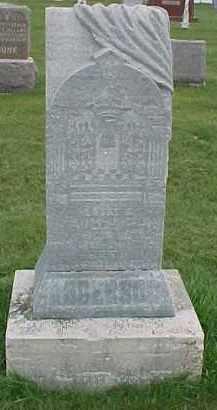 ANDERSON, ALBERT E. - Dixon County, Nebraska | ALBERT E. ANDERSON - Nebraska Gravestone Photos