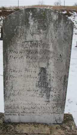 ANDERSON, ANDREW G. - Dixon County, Nebraska | ANDREW G. ANDERSON - Nebraska Gravestone Photos