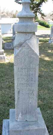 ANDERSON, ARTHUR - Dixon County, Nebraska | ARTHUR ANDERSON - Nebraska Gravestone Photos