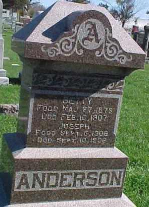 ANDERSON, BETTY - Dixon County, Nebraska | BETTY ANDERSON - Nebraska Gravestone Photos