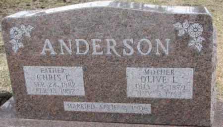 ANDERSON, OLIVE L. - Dixon County, Nebraska | OLIVE L. ANDERSON - Nebraska Gravestone Photos