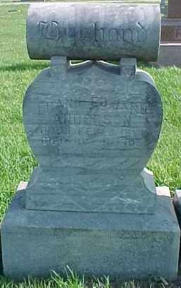 ANDERSON, FRANK EDWARD - Dixon County, Nebraska   FRANK EDWARD ANDERSON - Nebraska Gravestone Photos