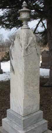 ANDERSON, OLE K. - Dixon County, Nebraska | OLE K. ANDERSON - Nebraska Gravestone Photos