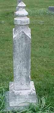ANDERSON, TEKLA AMELE - Dixon County, Nebraska | TEKLA AMELE ANDERSON - Nebraska Gravestone Photos