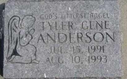 ANDERSON, TYLER GENE - Dixon County, Nebraska | TYLER GENE ANDERSON - Nebraska Gravestone Photos