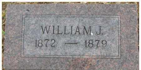 ARMSTRONG, WILLIAM J. - Dixon County, Nebraska | WILLIAM J. ARMSTRONG - Nebraska Gravestone Photos