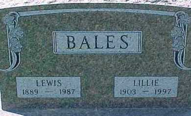 BALES, LILLIE - Dixon County, Nebraska | LILLIE BALES - Nebraska Gravestone Photos