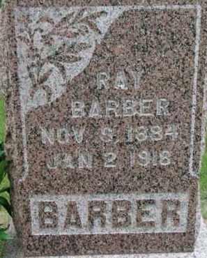 BARBER, RAY - Dixon County, Nebraska | RAY BARBER - Nebraska Gravestone Photos
