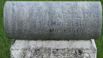BARTLING, RAY - Dixon County, Nebraska | RAY BARTLING - Nebraska Gravestone Photos