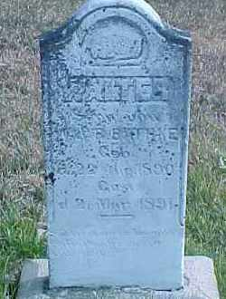 BATHKE, WALTER - Dixon County, Nebraska | WALTER BATHKE - Nebraska Gravestone Photos