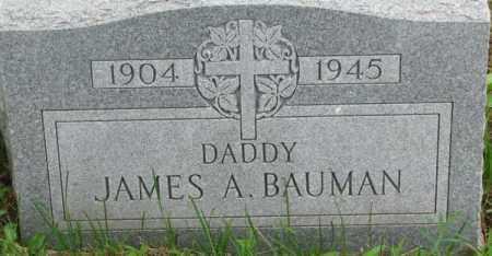BAUMAN, JAMES A. - Dixon County, Nebraska | JAMES A. BAUMAN - Nebraska Gravestone Photos