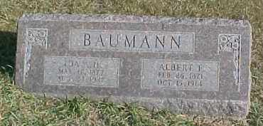 BAUMANN, IDA A.H. - Dixon County, Nebraska | IDA A.H. BAUMANN - Nebraska Gravestone Photos