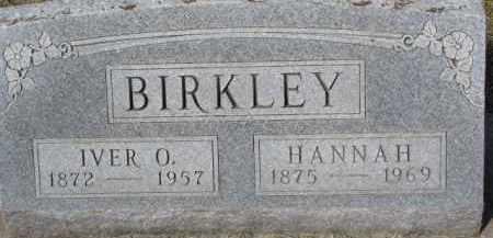 BIRKLEY, IVER O. - Dixon County, Nebraska | IVER O. BIRKLEY - Nebraska Gravestone Photos