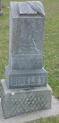 BIRKLEY, OLIANA - Dixon County, Nebraska | OLIANA BIRKLEY - Nebraska Gravestone Photos