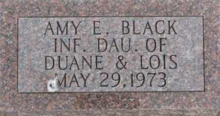 BLACK, AMY E. - Dixon County, Nebraska | AMY E. BLACK - Nebraska Gravestone Photos