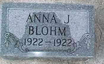 BLOHM, ANNA J. - Dixon County, Nebraska | ANNA J. BLOHM - Nebraska Gravestone Photos
