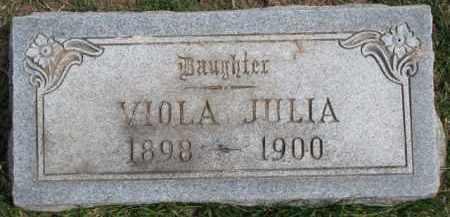BONDERSON, VIOLA JULIA - Dixon County, Nebraska | VIOLA JULIA BONDERSON - Nebraska Gravestone Photos