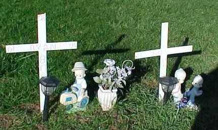 BORG, JOSHUA EUGENE - Dixon County, Nebraska | JOSHUA EUGENE BORG - Nebraska Gravestone Photos