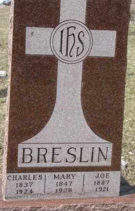 BRESLIN, MARY - Dixon County, Nebraska | MARY BRESLIN - Nebraska Gravestone Photos