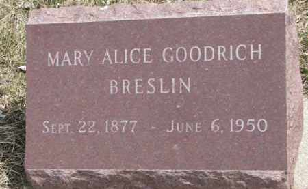 BRESLIN, MARY ALICE - Dixon County, Nebraska | MARY ALICE BRESLIN - Nebraska Gravestone Photos