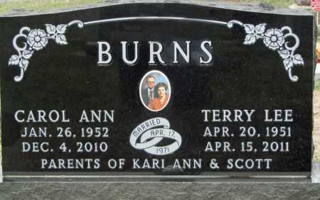BURNS, TERRY LEE - Dixon County, Nebraska | TERRY LEE BURNS - Nebraska Gravestone Photos