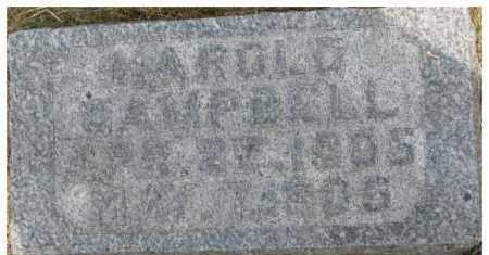 CAMPBELL, HAROLD - Dixon County, Nebraska | HAROLD CAMPBELL - Nebraska Gravestone Photos