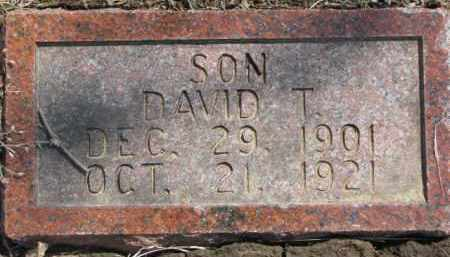 CARLSON, DAVID T. - Dixon County, Nebraska | DAVID T. CARLSON - Nebraska Gravestone Photos