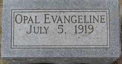 CARLSON, OPAL EVANGELINE - Dixon County, Nebraska | OPAL EVANGELINE CARLSON - Nebraska Gravestone Photos