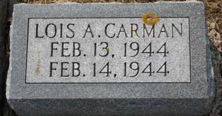 CARMAN, LOIS A. - Dixon County, Nebraska | LOIS A. CARMAN - Nebraska Gravestone Photos