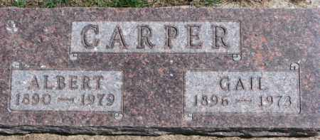 CARPER, ALBERT - Dixon County, Nebraska | ALBERT CARPER - Nebraska Gravestone Photos