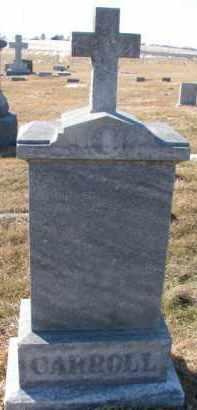 CARROLL, MICHAEL - Dixon County, Nebraska   MICHAEL CARROLL - Nebraska Gravestone Photos