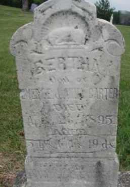 CARTER, BERTHA - Dixon County, Nebraska   BERTHA CARTER - Nebraska Gravestone Photos
