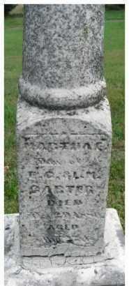 CARTER, MARTHA E. - Dixon County, Nebraska | MARTHA E. CARTER - Nebraska Gravestone Photos