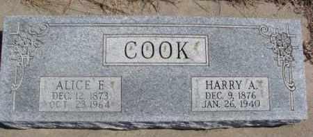 COOK, ALICE F. - Dixon County, Nebraska | ALICE F. COOK - Nebraska Gravestone Photos