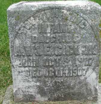COOK, INFANT - Dixon County, Nebraska | INFANT COOK - Nebraska Gravestone Photos