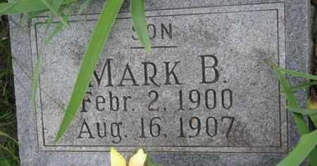 COOK, MARK B. - Dixon County, Nebraska | MARK B. COOK - Nebraska Gravestone Photos