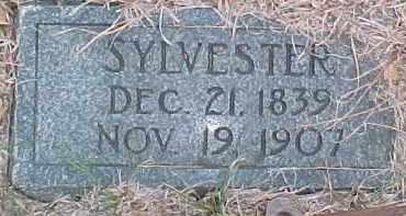 COOK, SYLVESTER - Dixon County, Nebraska | SYLVESTER COOK - Nebraska Gravestone Photos